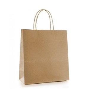 Paper Handle Bags 10''x5''x13''